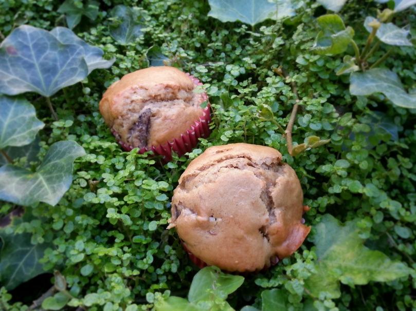 Muffins higos y nueces
